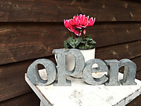Open2239